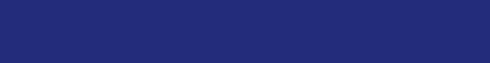 BorgWarner_Logo_Blue_sm