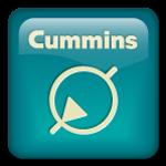 Cummins Pumps